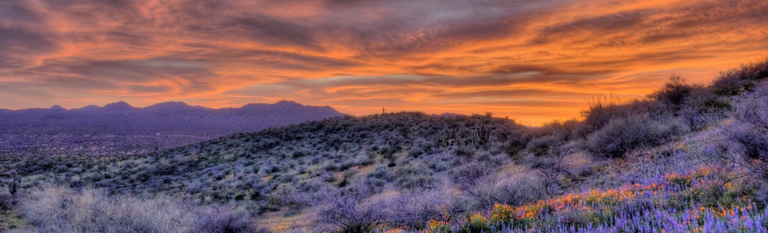 Siera Vista, AZ