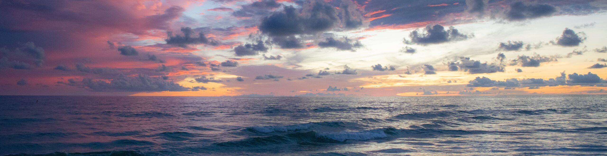 Côte au trésor, Floride