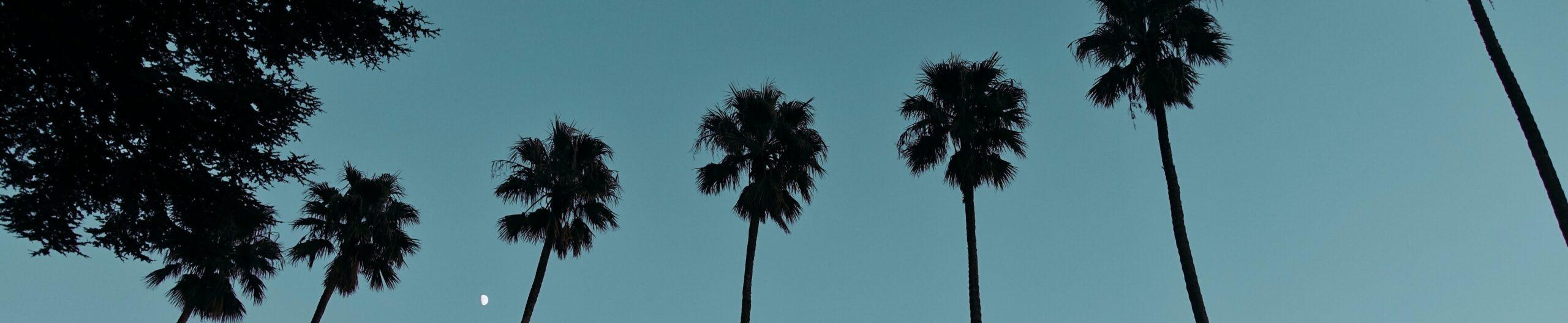 Palm Bay, FL
